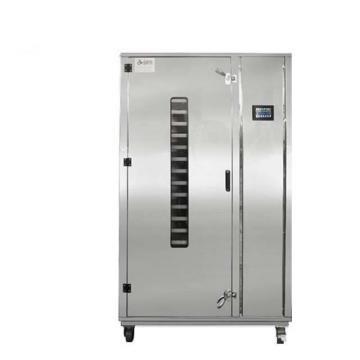 Commercial Type Food Fruit Heat Pump Dryer/Dehydrator Machine