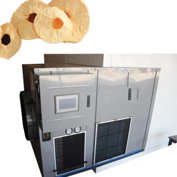 5m² Industrial Freeze Dryer for Vegetables, Fruit, Mushroom, Aloe, Herb