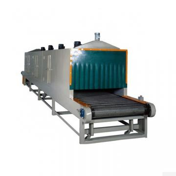 Coconut Peels Mesh Belt Dryer for Foodstuff Industry