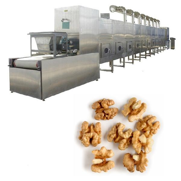 Intelligent Drying Vegetable Process Equipment